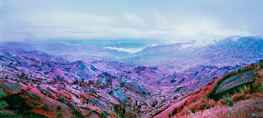Richard Mosse_because_the_night
