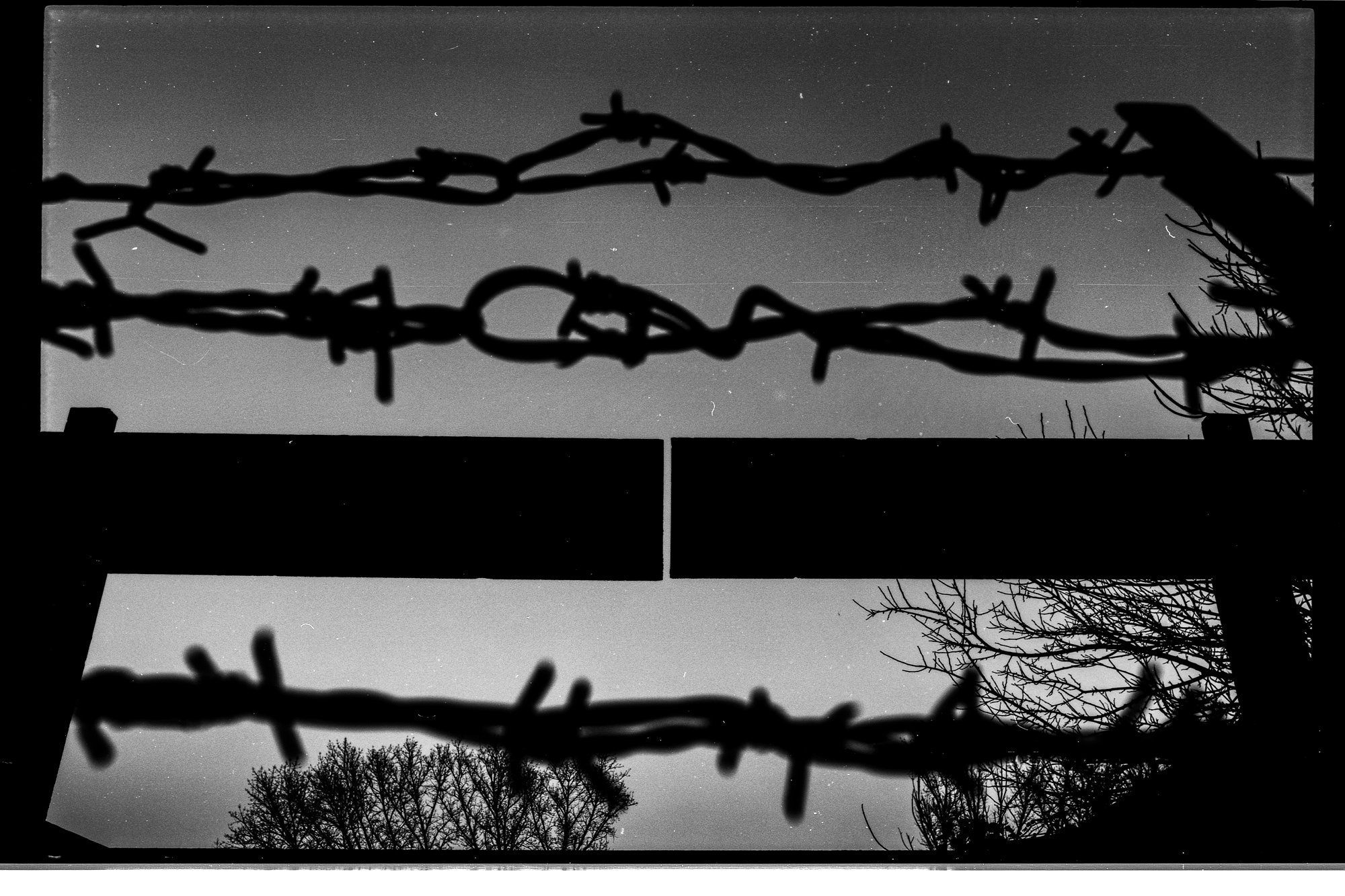 BIELIK István: Részlet A legsötétebb órán című sorozatból / from series The Darkest Hour, 2019