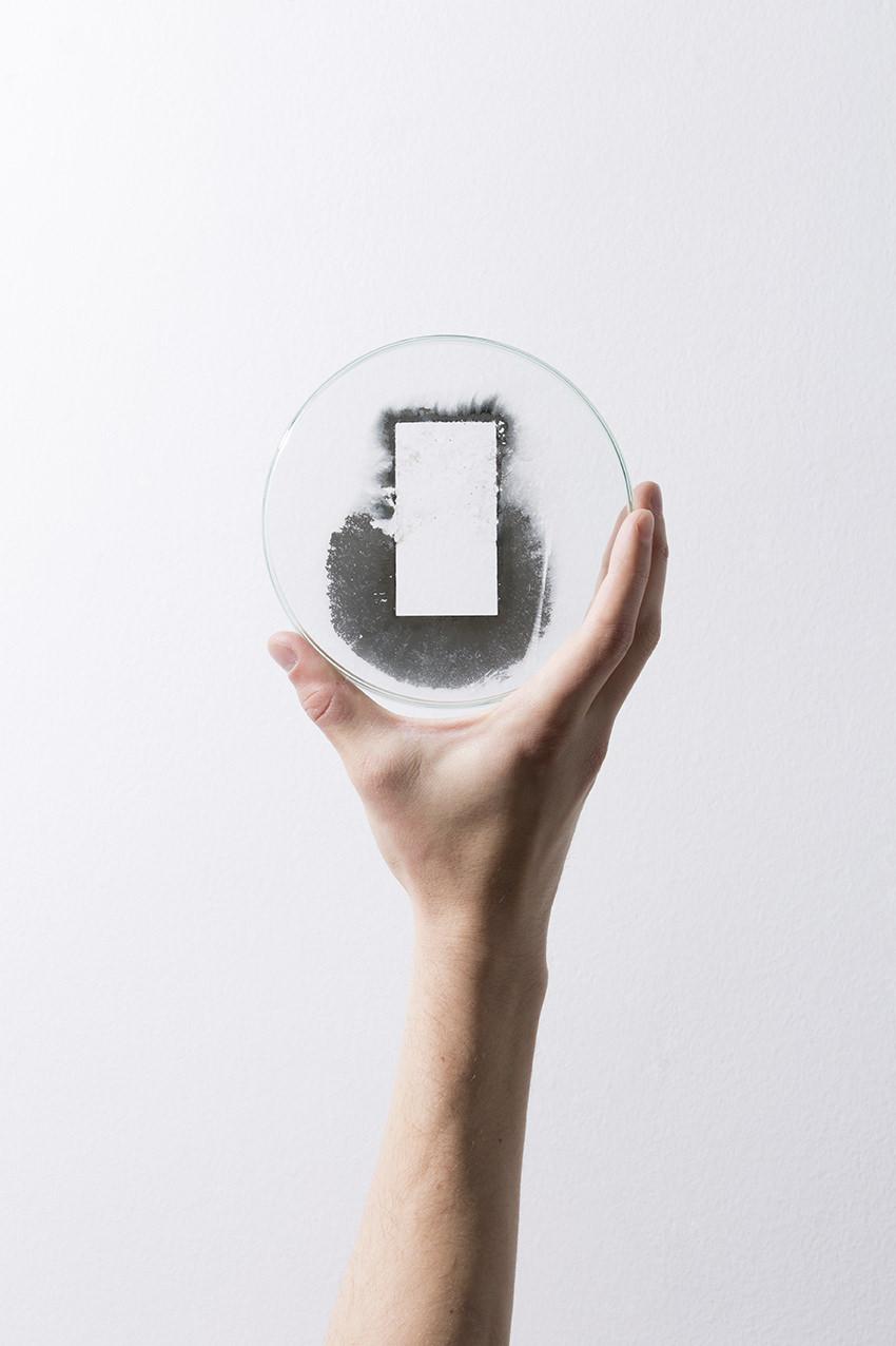 Dobokay Máté: Silver on Glass (Petri-dish), 2019 © Dobokay Máté