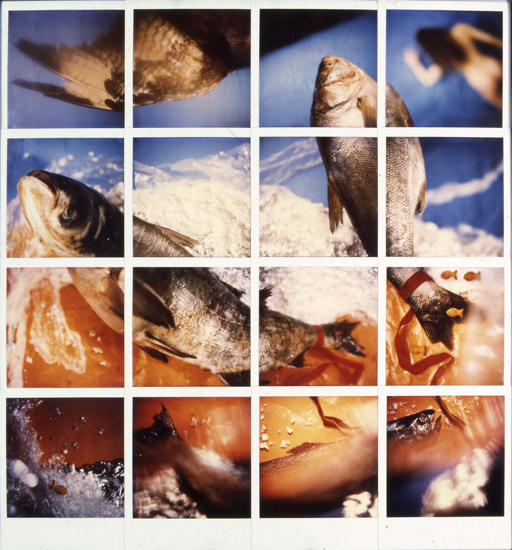Drégely Imre: Pisces 1–16., 1992 © Drégely Imre