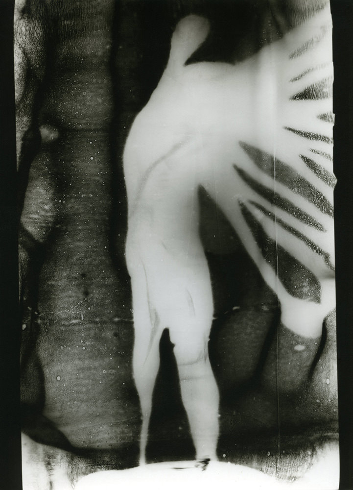 Frankl Aliona: Angel, 1998 © Frankl Aliona