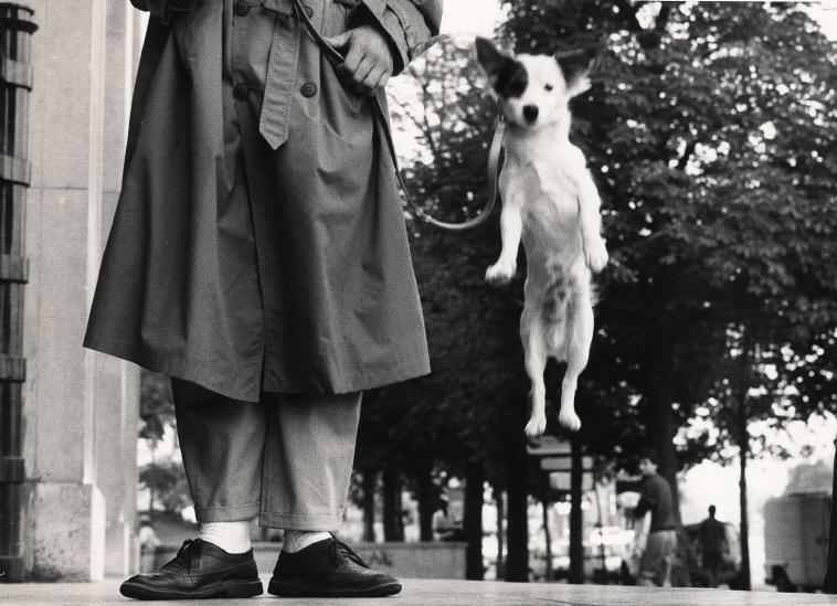 Párizs, Franciaország, 1989 © Elliott Erwitt / Magnum Photos