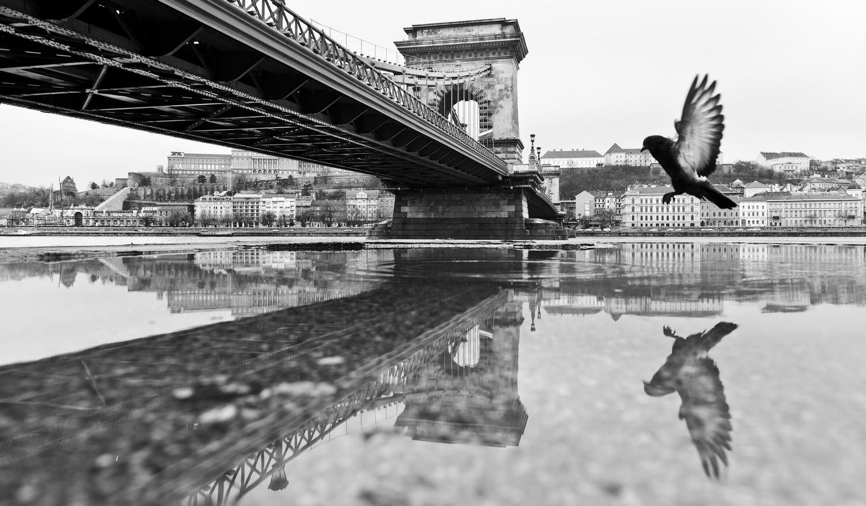 © Fazekas István: Madárlátta Budapest (részlet a sorozatból)