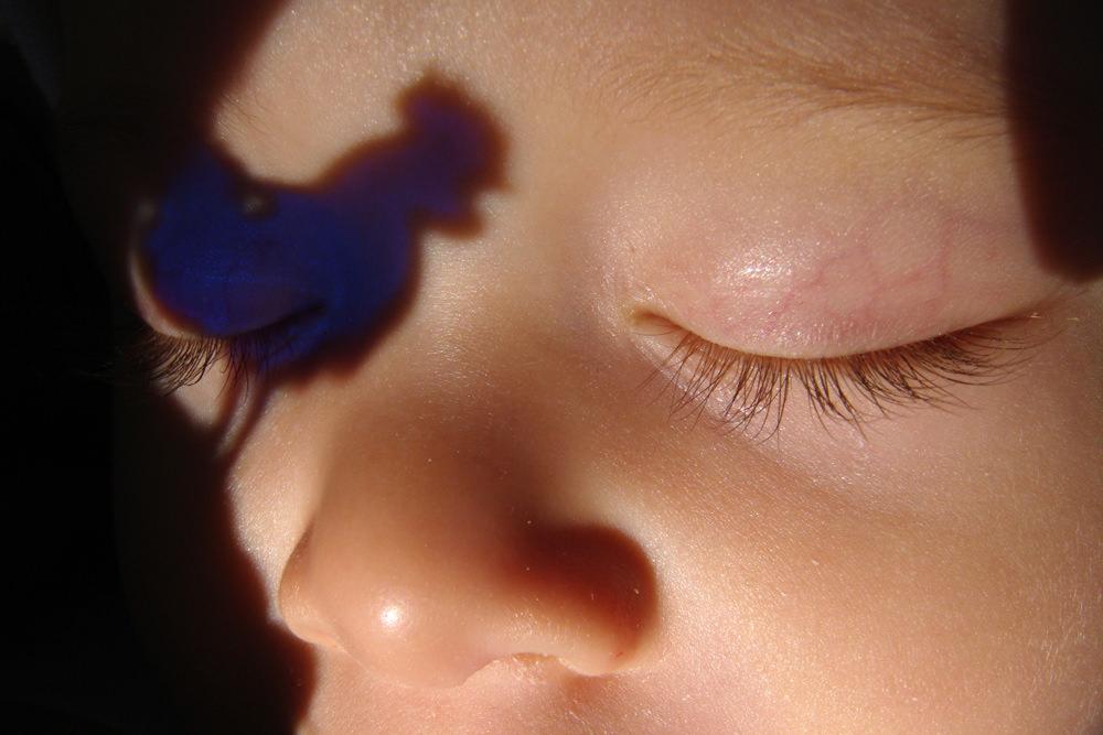 Hangay Enikő: Kék kakas, 2009 © Hangay Enikő
