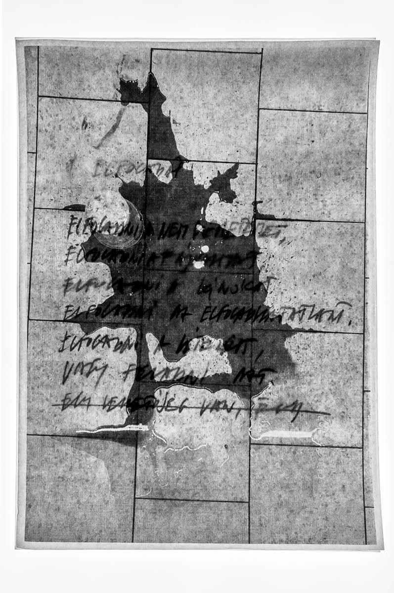 Csontó Lajos: Elfogadni, részlet a Kutya év című sorozatból, 2020, c-print, 60x90 cm © Csontó Lajos