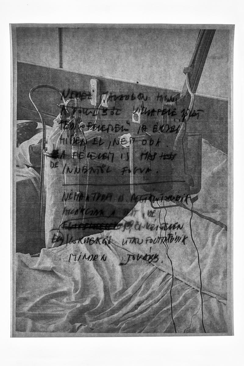 Csontó Lajos: Nehéz magadban hinni, részlet a Kutya év című sorozatból, 2020, c-print, 60x90 cm © Csontó Lajos