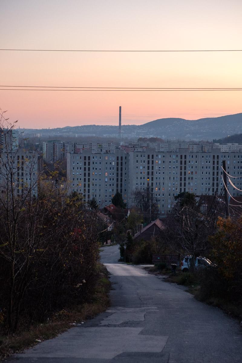 Halász Dániel: Határvidék, részlet a sorozatból | Borderland, from the series, 2019–20 © Halász Dániel