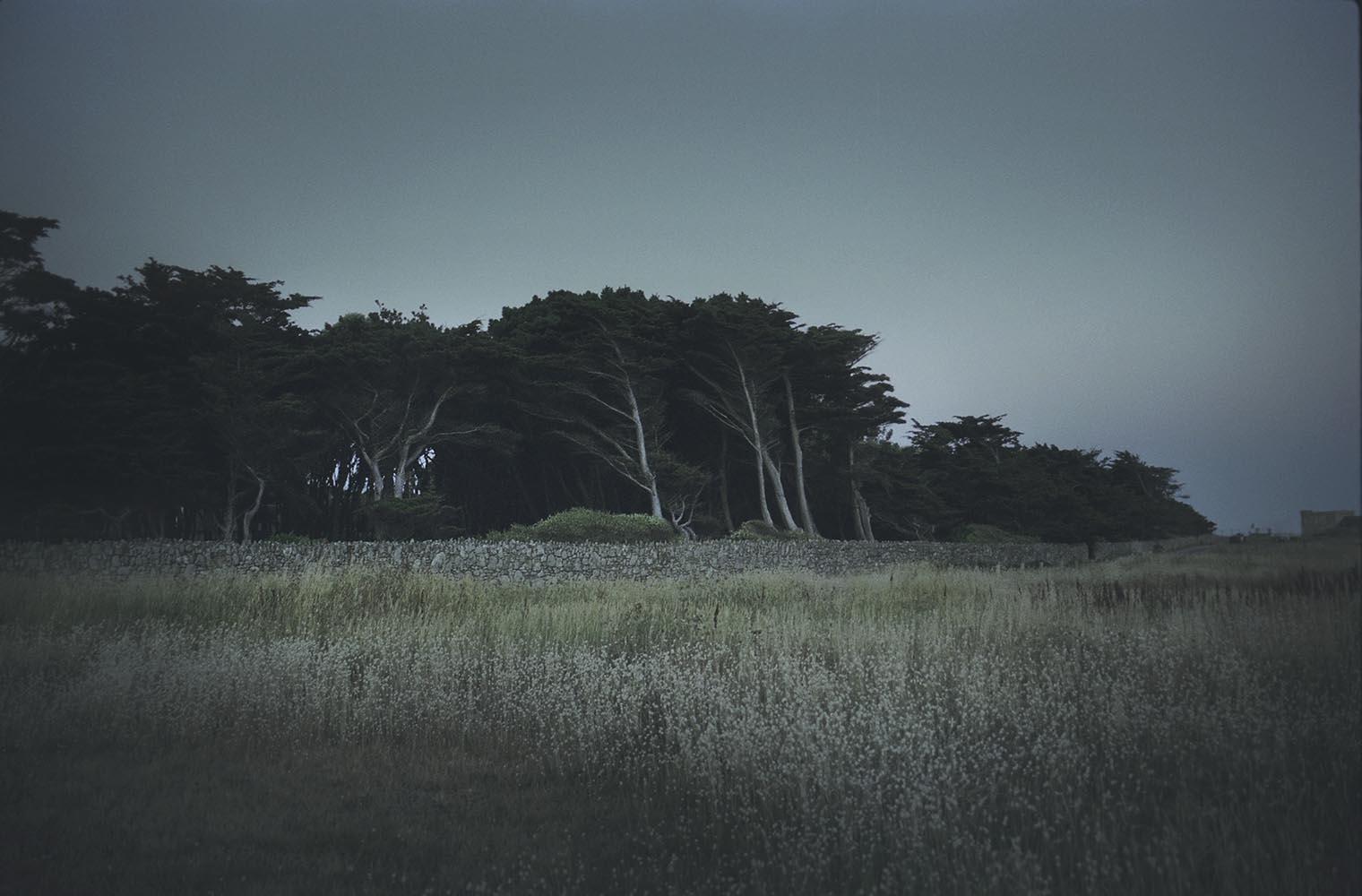 Hodosy Enikő: Bleu, Cote sauvage, 2013 © Hodosy Enikő