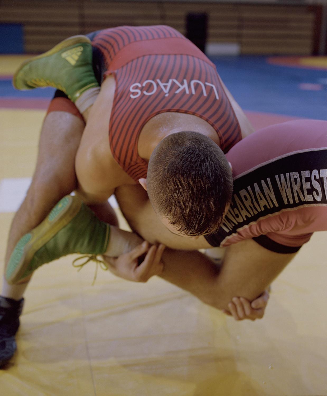 LADOCSI András: Birkózók II. / Wrestlers II.