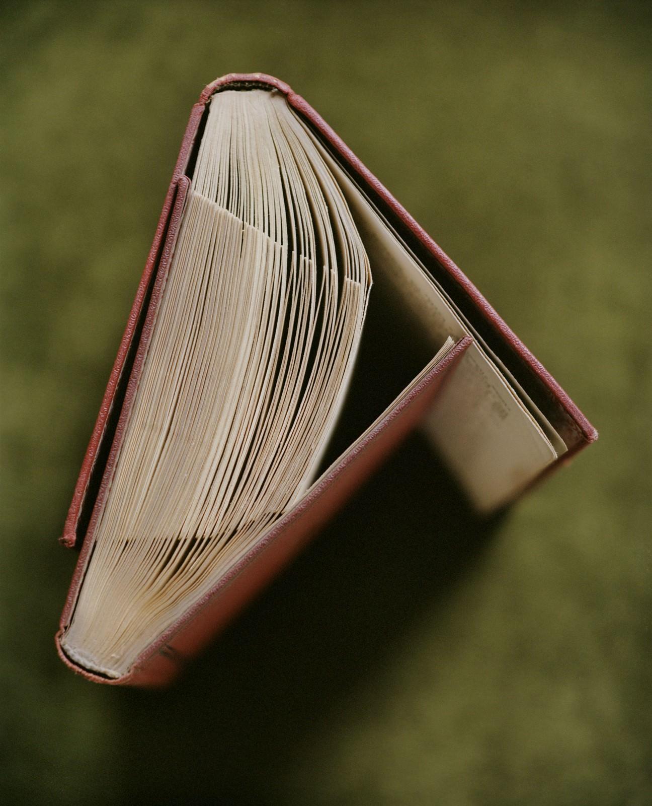 Booklove nr.1 2014 ., Részlet a Bird, Bald, Book, Bubble, Bucket, Brick, Potato sorozatból,  100x118,74cm