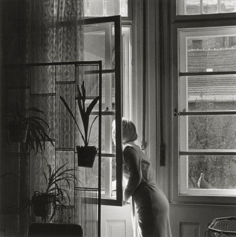 Sylvia Plachy: Lulu (1972)